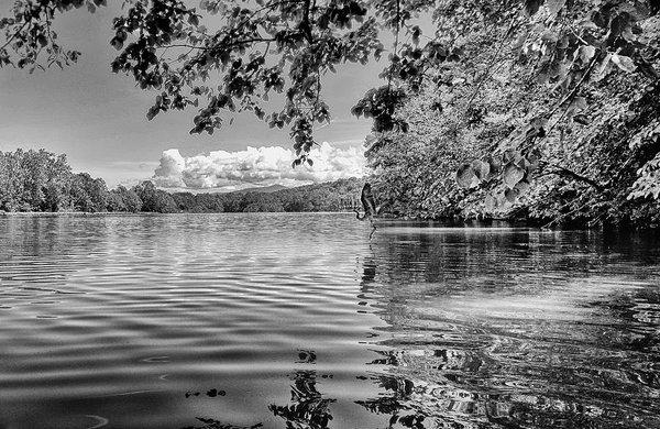 south-fork-shenandoah-river-with-heron-lara-ellis